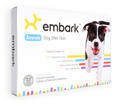 Embark Breed + Health Kit Box