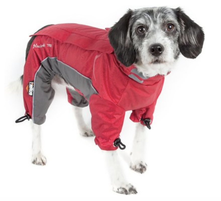 embark dog coat
