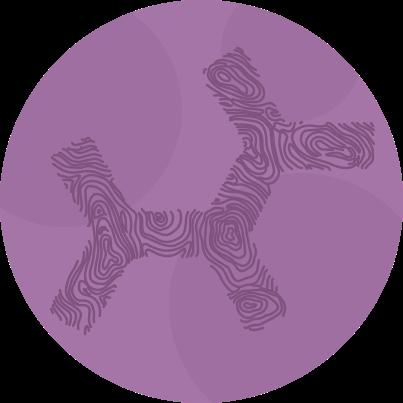 embark dog dna test purple logo