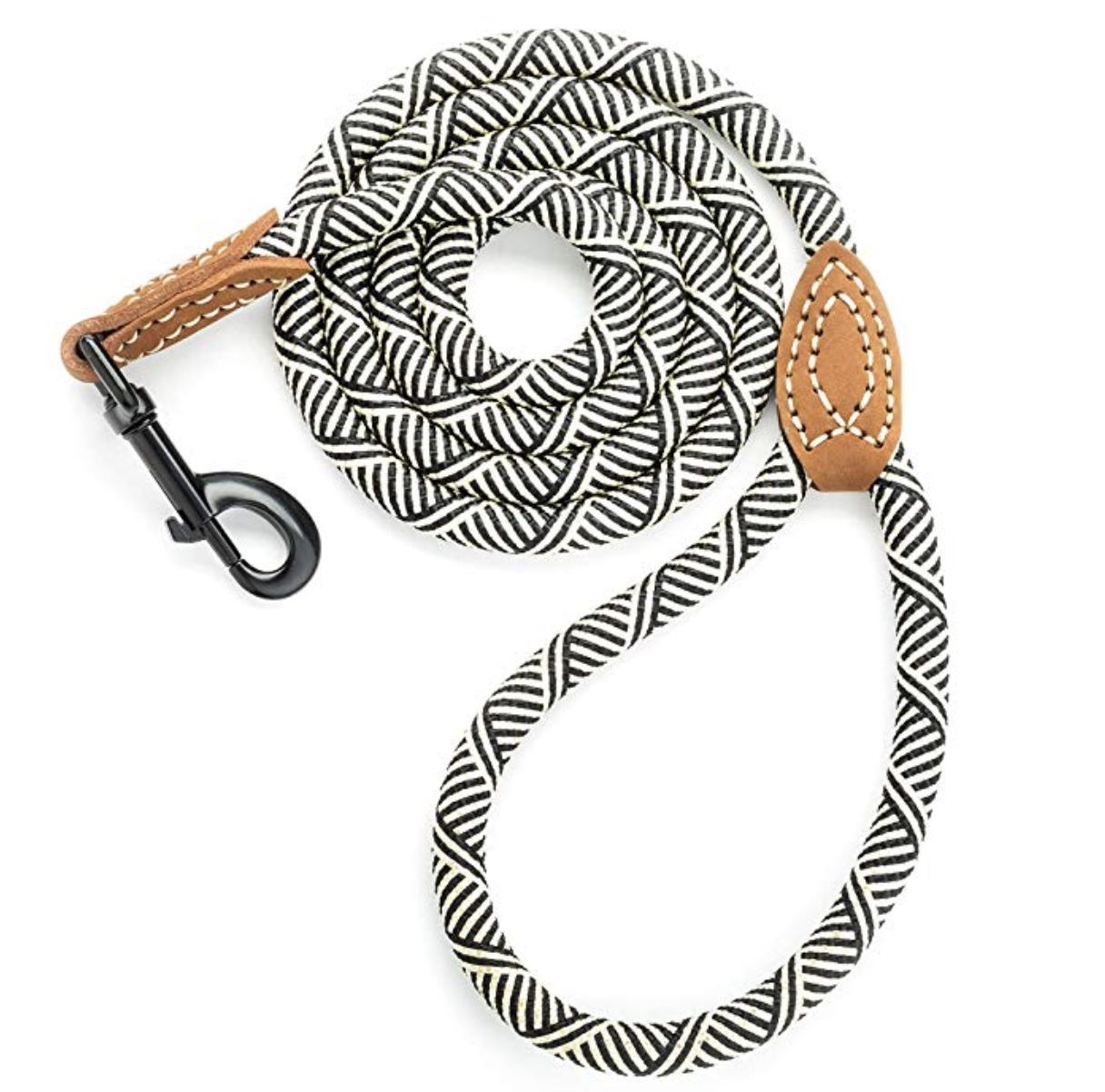 embark dog leash rope