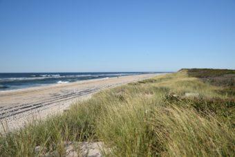 embark barrett beach