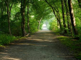 embark gardiner county park