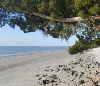 embark jekyll island beaches