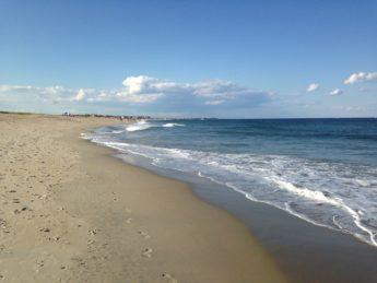 embark seabrook beach