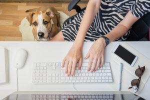 dog-typing