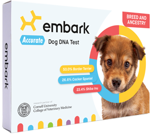 Embark Tests For Over 250 Breeds | Dog Ancestry | Embark