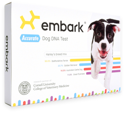 Embark Dog DNA Test: Most Accurate & Highest Reviewed Dog