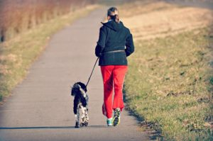 dog_on_run