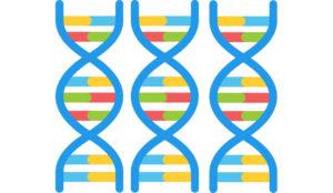 Genes close up
