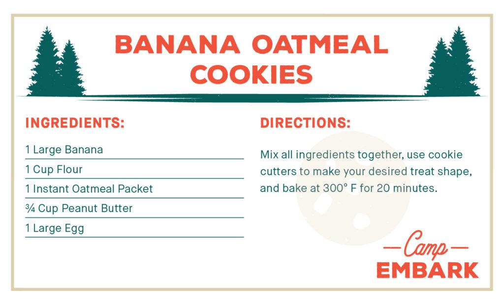 homemade dog treat recipe banana oatmeal cookies