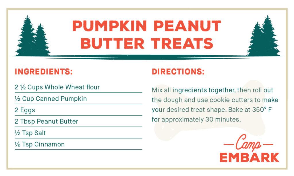 homemade dog treat recipe peanut butter pumpkin