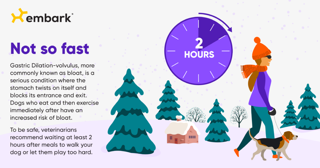 holiday routine eating exercise tip